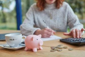 Spaarvarkentje met geld